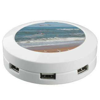 Seagulls Flying Over the Beach USB Charging Station