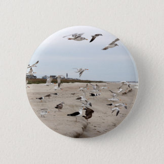 Seagulls Flying, Standing and Eating on the Beach Button