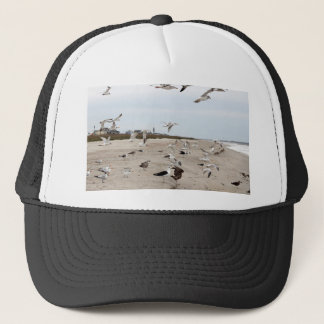 Seagulls Flying, Standing and Eating on the Beach Trucker Hat