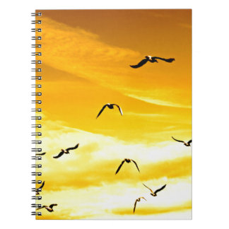 seagulls flying to success spiral notebook