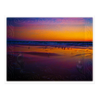Seagulls Frolicking & Flying During Dawn on Beach Postcard