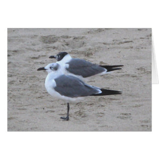 Seagulls in Asbury Park NJ Stationery Note Card