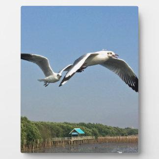 Seagulls in Flight Plaque