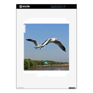 Seagulls in Flight Skin For The iPad 2
