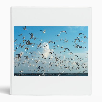 seagulls in sky over inlet birds 3 ring binder