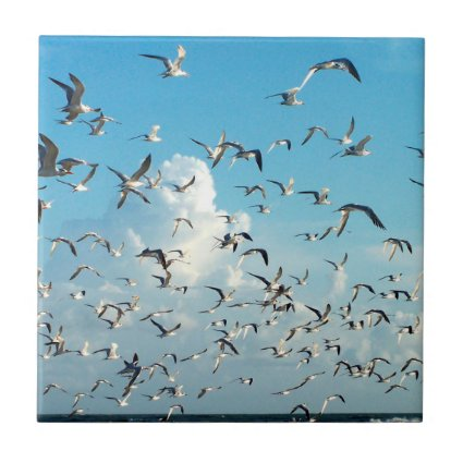 seagulls in sky over inlet birds ceramic tile