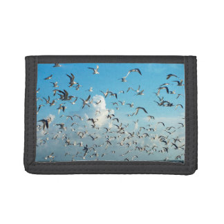 seagulls in sky over inlet birds trifold wallets