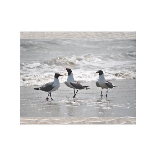 Seagulls in the Ocean's Waves enjoy the Beach Stretched Canvas Prints