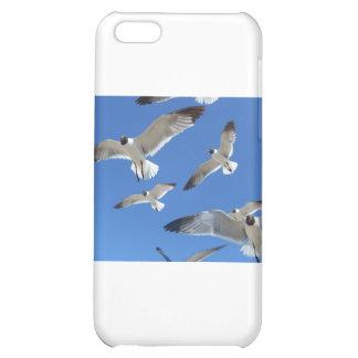 seagulls iPhone 5C cases