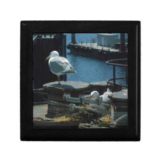 Seagulls Keepsake Box