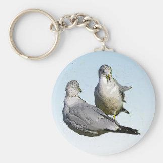Seagulls Key Chains