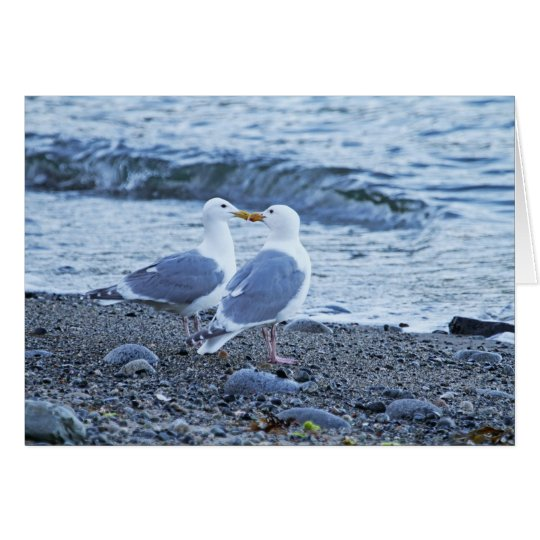 Seagulls Kissing on the Beach Photo Card