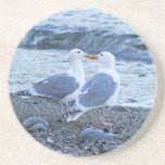 Seagulls Kissing on the Beach Photo Coasters