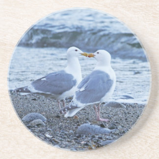 Seagulls Kissing on the Beach Photo Drink Coaster