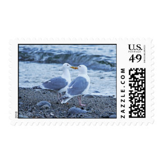 Seagulls Kissing on the Beach Photo Postage