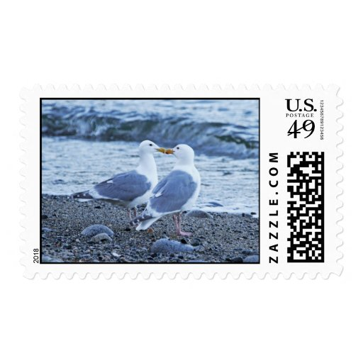 Seagulls Kissing on the Beach Photo Postage Stamp