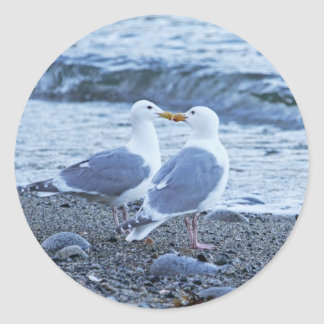 Seagulls Kissing on the Beach Photo Classic Round Sticker