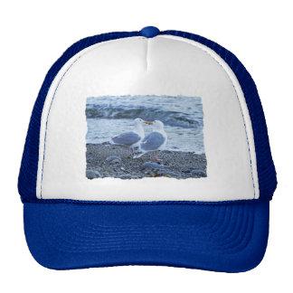Seagulls Kissing on the Beach Photo Trucker Hat