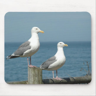 Seagulls Mouse Pad