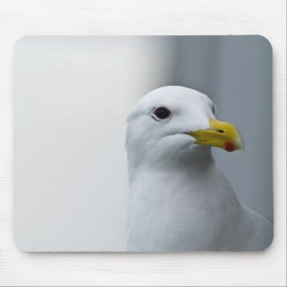 Seagulls Need Love Too Mouse Pads