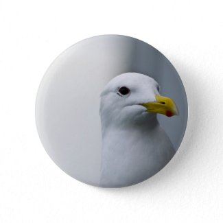 Seagulls Need Love Too Pinback Button