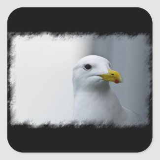 Seagulls Need Love Too Square Sticker