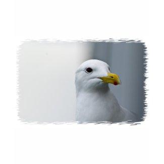 Seagulls Need Love Too Tee Shirt
