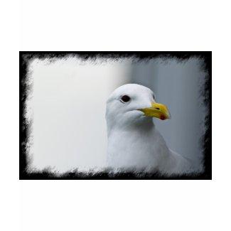 Seagulls Need Love Too Tees