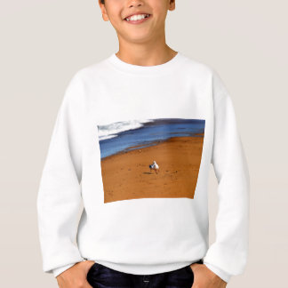 SEAGULLS ON BEACH QUEENSLAND AUSTRALIA SWEATSHIRT