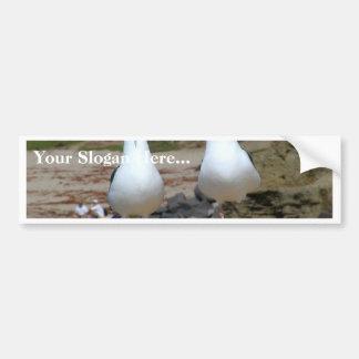 Seagulls On Oceans Beach Bumper Stickers