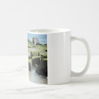Seagulls on rocks coffee mug