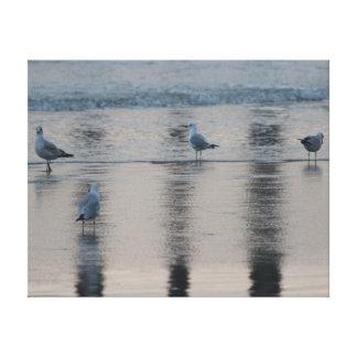 Seagulls on the Beach at Sunset Canvas Print