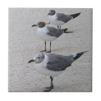 Seagulls on the Beach Ceramic Tile