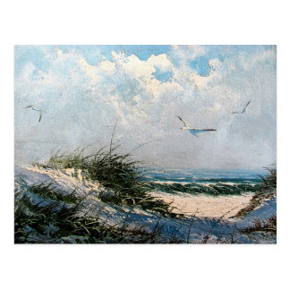 Seagulls on the beach postcard