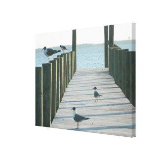 Seagulls on The Docks Canvas Print
