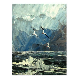 Seagulls on the sea postcard