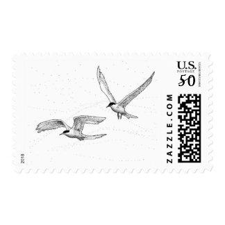 Seagulls Postage Stamp