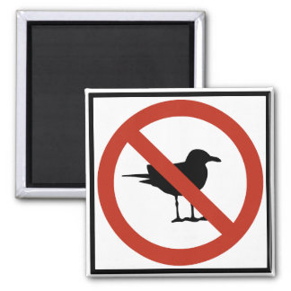 Seagulls Prohibited 2 Inch Square Magnet