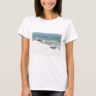 seagulls sea gull picture photo art gifts T-Shirt