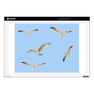 """Seagulls Decals For 17"""" Laptops"""