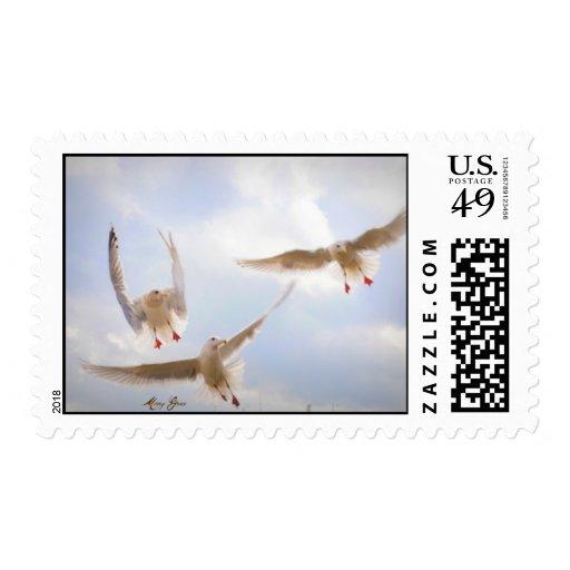 Seagulls Stamp