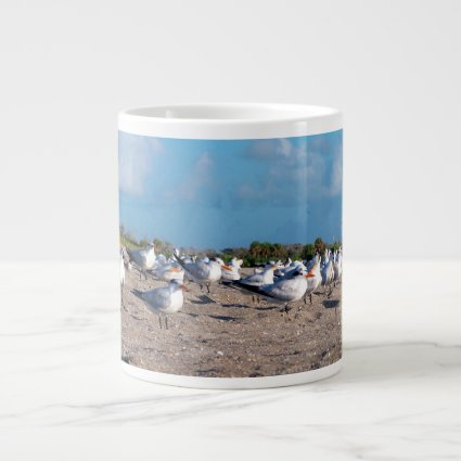 Seagulls standing on beach eye level extra large mugs