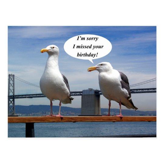Seagulls talking postcard