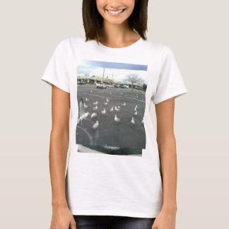 Seagulls Where is the beach? T-Shirt