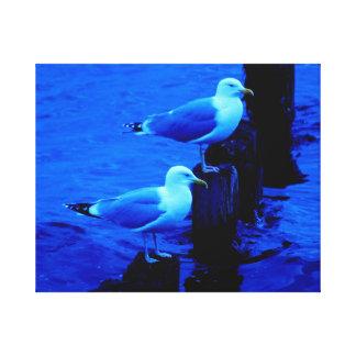 Seaguls.2014. Poster. Canvas Print