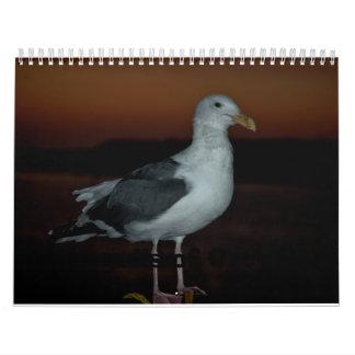 Seaguls de Bandon, Oregon Calendario De Pared