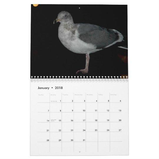Seaguls of Bandon,Oregon Calendar