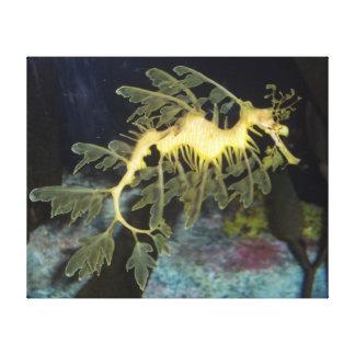 Seahorse amarillo lienzo envuelto para galerías