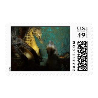 Seahorse Aquarium Postage Stamp