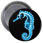Seahorse azul de la radiografía - botón pin